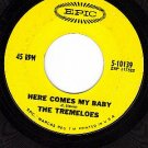 EPIC 10139 TREMELOES Here Comes My Baby ~ Gentleman Of