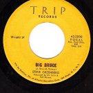 TRIP 3000 45 rpm STEVE GREENBERG Big Bruce ~ Run To You