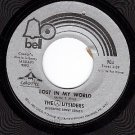 45 BELL 904 THE OUTSIDERS ~ Lost in My World ~ Changes