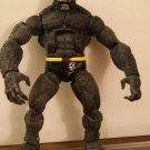The Beast / X man