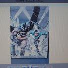 Batman & Nightwing / Robin poster