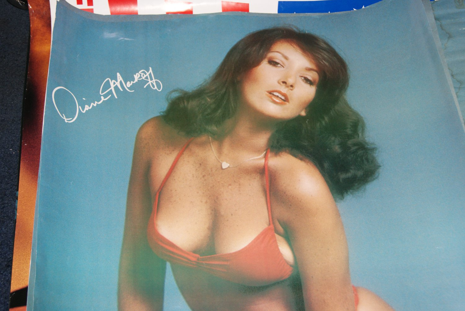 Diane Markoff poster