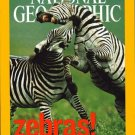 National Geographic Septemeber 2003-Zebras!