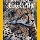 National Geographic December 1999-Cheetahs!