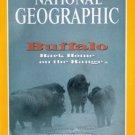 National Geographic November 1994-Buffalo Back Home on the Range