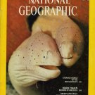 National Geographic September 1975-Strange World Of The Red Sea Reefs