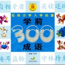300 Essential Chinese Idioms