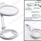 Foldable Magnifier With 2 LED Illumination Lamps 2 Lens 2x & 6x (MG3B-1A)