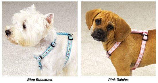 Fashion Harnesses Doggie Collar Harness Clothes (SM)