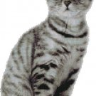 Counted Cross Stitch Kit - MISCHIEVOUS CAT