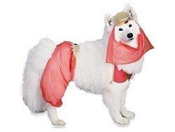 Dog Harem Girl Genie Costume SZ SM NEW Rubies