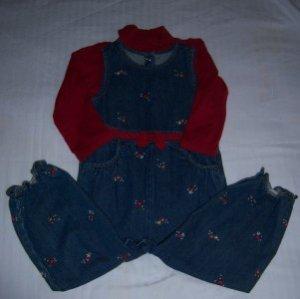 Gymboree MOUNTAIN CABIN Jeans Shirt Set 3T EUC FALL