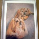 Lhasa Apso #3 Dog Notecards Envelopes Set - Maystead - NEW