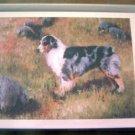 Australian Shepherd #2 Dog Notecards Envelopes Set - Maystead - NEW