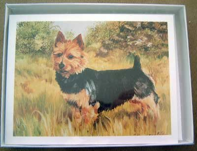 Australian Terrier #1 Dog Notecards Envelopes Set - Maystead - NEW