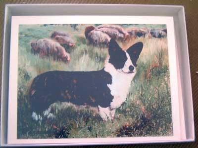 Welsh Corgi #9 Dog Notecards Envelopes Set - Maystead - NEW