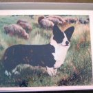 Welsh Corgi #9 Dog Notecards Envelopes Set - Maystead - NEW