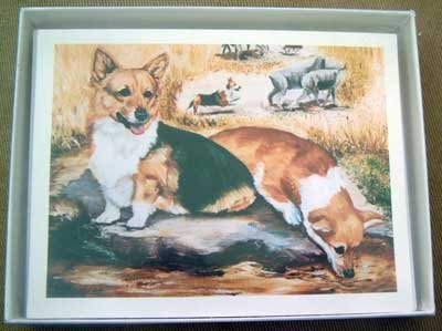 Welsh Corgi #6 Dog Notecards Envelopes Set - Maystead - NEW
