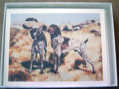 German Shorthair Pointer #3 Dog Notecards Envelopes Set - Maystead - NEW