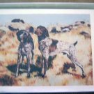 German Shorthair Pointer #3 Dog Notecards Envelopes Set - Maystead - NEW
