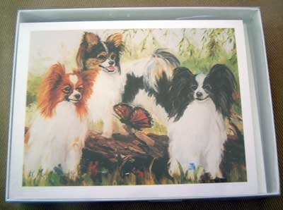 Papillion #5 Dog Notecards Envelopes Set - Maystead - NEW