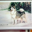 Alaskan Malemute #6 Dog Notecards Envelopes Set - Maystead - NEW