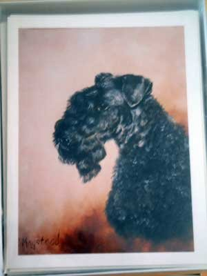 Kerry Blue Terrier #2 Dog Notecards Envelopes Set - Maystead - NEW