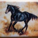 Horse Black Backed Quality Magnet - Maystead - NEW