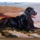 Dog Breed Full Backed Quality Magnet - Maystead - NEW RFC1