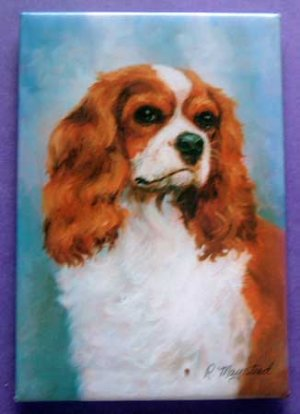 Dog Breed Full Backed Quality Magnet - Maystead - NEW KCS2