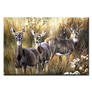 36 inch x 48 inch Handmade Real Oil Painting Deers