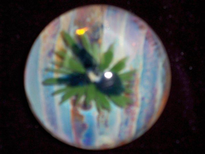 Blue Iris Paperweight