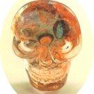 multicolored skull
