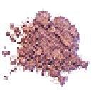 Mineral Makeup Blush Desert Rose 5 Gram Jar