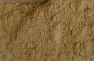 Mineral Makeup Multi-tasking Bisque Concealer 5 Gram Jar
