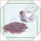 Flower-Soft FUCHSIA 30ml jar