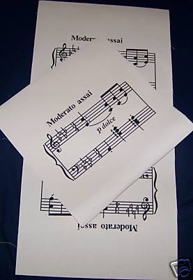1 TOTE BAG SEWING PROJECT MUSICAL NOTES PANEL