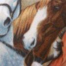 Hand-Tied Fleece Horse Blanket
