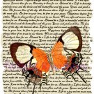 Clemantine Butterfly Vintage Art Print 12x8 FREE SHIPPING shabby chic