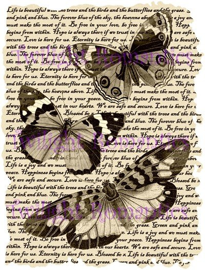 Beautiful Butterflies in sepia Vintage Art Print 12x8 FREE SHIPPING shabby chic