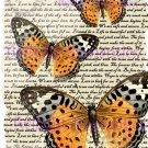 Orange Butterflies Vintage Art Print 12x8 FREE SHIPPING shabby chic