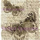 Camouflage Butterflies in sepia Vintage Art Print 12x8 FREE SHIPPING shabby chic