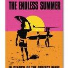 CANVAS: Endless summer