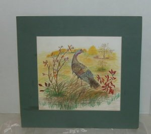 Turkey Sketch, Hand Penciled, Pretty, With Green Mat,Trees, Flowers,No Frame