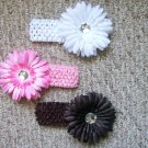 Neopolitan--Flower Clips with Matching Headband Set