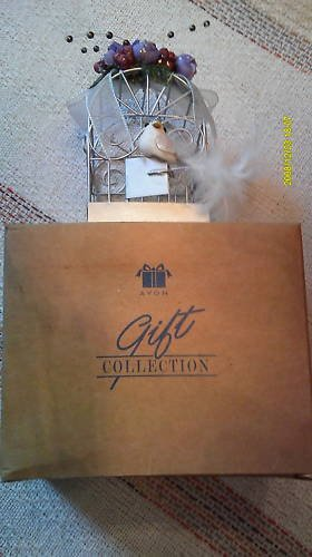 Avon Winter Nest Ornament Cage Original Box USED