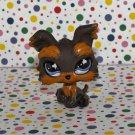 Littlest Pet Shop #509 Yorkie~Pet Pairs LPS