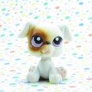 Littlest Pet Shop #84 White Boxer Dog ~ LPS Pet Pairs