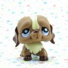 Littlest Pet Shop #688 Brown St Bernard Dog ~ LPS Frosty Fortress