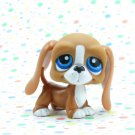 Littlest Pet Shop #222 Brown Bassett Hound Dog ~ LPS In The Picture Pets